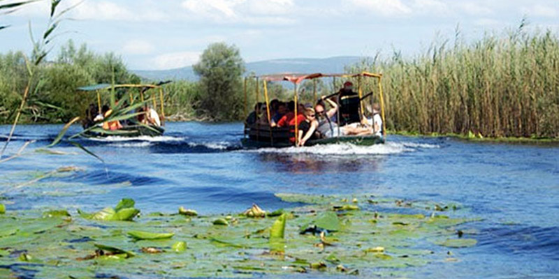 Nature Park «Hutovo blato» as wetlands, with an abundance of water and lots of animal and plant species.